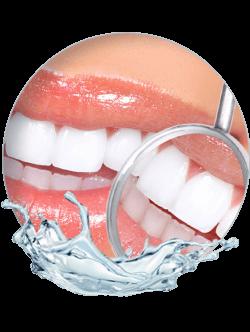 Praxisklinik Bartsch - Erfolgsquote von Zahnimplantaten